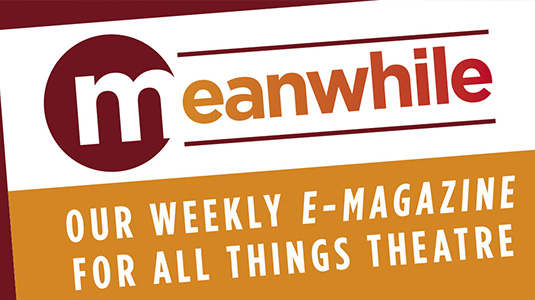 "A graphic with the text: ""Meanwhile. Our weekly e-magazine for all things theatre."""